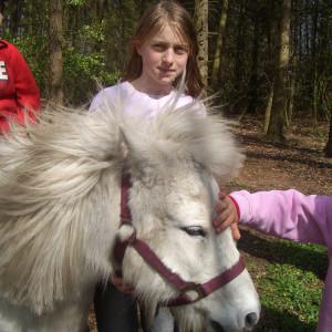 Pony Hof loenne-tiekmann